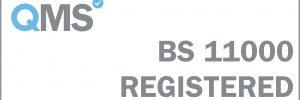 BS 11000 Registered - White